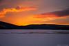samsebeskazal-2354.jpg (samsebeskazal) Tags: winter newjersey ringwood