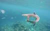 Fiji iPhone-2455 (Mirosl@v) Tags: cessna fiji leleuvia levuka nadi ovalau pacific paradise sharks suva turtleisland wreck yasawa