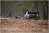 export_IMG_1132-2.jpg (Zi Ro) Tags: nationaalpark vogels hoge veluwe vogelhut schaarsbergen otterlo edelhert overige hogeveluwe
