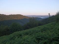 Teign Gorge from Hunter's Path, at sunrise (Philip_Goddard) Tags: europe unitedkingdom britain british britishisles greatbritain uk england southwestengland devon dartmoornationalpark drewsteignton teignvalley teigngorge hunterspath dawn sunrise