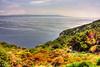 IMG_6319_20_21_tonemapped (2)-1 (Andre56154) Tags: sardinien sardegna sardinia italien italy italia landschaft landscape wasser water küste coast himmel sky strand beach ozean ocean