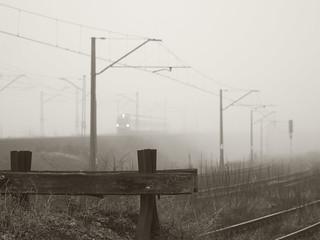 rail in fogg