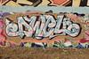 DWEL (TheGraffitiHunters) Tags: graffiti graff spray paint street art colorful nj new jersey camden legal wall mural dwel