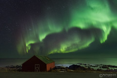 Aurora at Vikten (Paul Forgham) Tags: aurora auroraborealis northernlights vikten lofoten islands norway arctic winter polar night hut beach sea nightphotography paulforgham