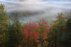 Misty Autumn Morning (lfeng1014) Tags: mistyautumnmorning autumncolours autumn mistymorning misty monttremblant quebec canada mountain landscape canon5dmarkiii ef1635mmf28liiusm lifeng