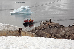 Brown_2017 12 11_3078 (HBarrison) Tags: harveybarrison hbarrison antarctica antarcticpeninsula paradiseharbor brownstation arctic antarctic arcticantarctic