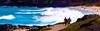 Makapu'U Beach Park, Oahu, Hawaii  - Image 504 (Dan Davila) Tags: oahu hawaii beach park surf ocean sports surfing body waves swim water sand people sea tree makapuu board reef