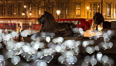 The Lion and the Balloons (lhiapgpeonk) Tags: nelsoncolumn trafalgarsquare kultur kunst england london kurioses grosbritannien culture grandebretagne greatbritain nelsonmonument art lart lichtinstallation landseerlions childhood collectifcoin lumiere lumierelondon lumierelondon2018 londonlumiere