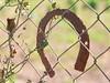 HorsesShoes (Ruben.contreras67) Tags: lumixdcvarioelmarit panasonicseriesfz dmcfz30 herradura ironhorse