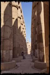 Exótica belleza (mariadoloresacero) Tags: acero mdacero sony ilca68 papiroforme lotiforme colonnes columnas amenhottepiii ramsésii amón templo egypte egipto luxor