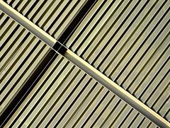 ∆nubicocc∆ (SilViolence) Tags: milano italia italy bicocca bicoccavillage lombardia lombardy architecture architettura contemporaryarchitecture p7000 nikon coolpix coolpixp7000 latergram snapseed europe europa minimal minimalism minimalismo abstract abstrakt abstrakte abstrait astratto astrattismo abstraction detail particolare dettaglio taglio outside copertura diagonale