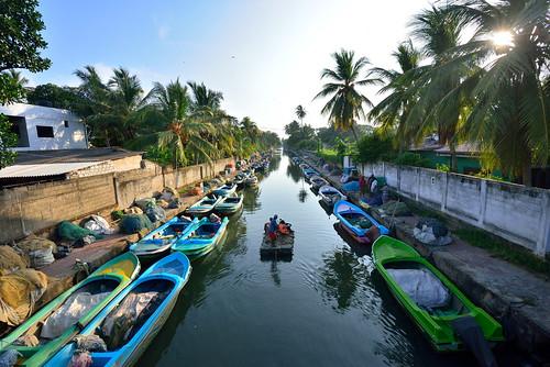 Sri_Lanka_17_405