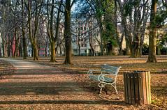 The bench and the park (Matjaž Skrinar) Tags: nikonsigma 100v10f 250v10f