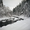Vintage camera photography (steffos1986) Tags: nature landscape 120film analog mediumformat kodakektar100 film foldingcamera bellows zeissikonnettar tripod landschaft track hike snow winter ice frozen frost novaranastigamat explore expression river water stream flowing rapids norway norwegen noruega europe scandinvaia scenic scenery countryside cold january