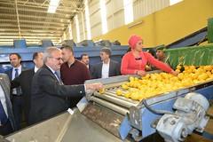 Narenciye paketleme fabrikasında incelemelerde bulunduk. Meşhur Finike portakalını ve limonu paketleme işini tecrübe ettik.  #Finike (mkaraloglu) Tags: finike