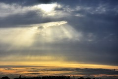 Sky light. (pstone646) Tags: sky dawn sunrise clouds sun colours weather view landscape nature stodmarsh kent rays