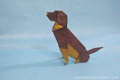 18/365 Beagle by Seth Friedman (origami_artist_diego) Tags: origami origamidog origamichallenge 365days 365origamichallenge sethfriedman