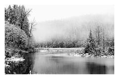 Island (rich trinter photos) Tags: mountrainier winter randle washington unitedstates us landscape trinterphotos island lake snow clouds fog skatecreekroad