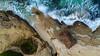 Windansea Surf Shack Aerial at Christmas Time (tltichy) Tags: lajolla windansea arial beach california christmas coast dawn dji drone longexposure morning ocean outdoors overhead pacific phantom4pro reef rock rushing sandiego seascape socal southerncalifornia sunrise surf surfshack tree water waves