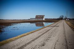 Sunday Drive (Off The Beaten Path Photography) Tags: country barn backroads rural reflection water road field farm farming usa america canon 5dmarkiii markiii indiana