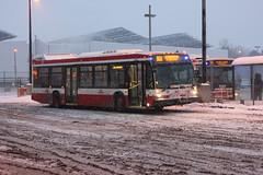 TTC 8677, TTC 1080 (BillyCabic) Tags: toronto ttc transit bus