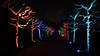 """Parkleuchten"" (Carsten Weigel) Tags: essen grugapark parkleuchten beleuchtung künstler licht nacht carstenweigel panasonic lumix g9 summilux leica farbe colour night lights park lightning artist"