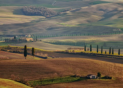 Hills of Pienza (gionatatammaro) Tags: landescape paesaggio pienza allaperto colline hills toscany italia cipressi trees travel