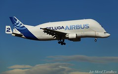Airbus BELUGA 2 (ivánmoral) Tags: airbusbeluga avion aviacion aeronautica aeronave aerea getafe aterrizaje bga