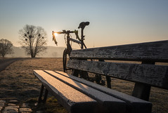 ❄️ Winter Commuting - it's cold but one of those #SimplePleasures (Happy Flickr Friday!) ❄️ (derliebewolf) Tags: simplepleasures flickrfriday winter commuting commute cycling cold earlymorning earlybird sunrise sram bike roadbike flare sunstar backlight backlit ice frosty icy bluesky goldenhour nature landscape tree