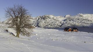 Winter in Lofoten -12-