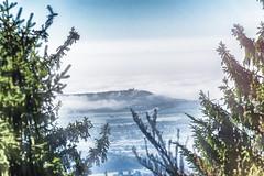 Beautiful Day II (*Capture the Moment*) Tags: 2017 baumwipfelpfad fotowalk herbst panoshot panoramablick panoramaview sonne sonya7m2 sonya7mii sonya7mark2 sonya7ii sonyfe70200mmf28gmoss sonyilce7m2 sun wetter