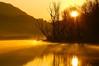 golden hour (Riboli Alessandro) Tags: sole alba fiume rio river water sun golden gold landscape nikon d700 tamron 200 airuno adda wwf uomo men sorgere sorge