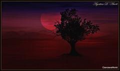 Rosso con albero di mandorlo - (2° Elaborazione.)  - Gennaio 2018 (agostinodascoli) Tags: albero mandorlo landscape paesaggi rosso photoshop art digitalart digitalpainting agostinodascoli
