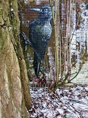 ROA / Blaisantvest - 2 mar 2018 (Ferdinand 'Ferre' Feys) Tags: gent ghent gand belgium belgique belgië streetart artdelarue graffitiart graffiti graff urbanart urbanarte arteurbano ferdinandfeys roa