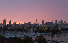 Rushcutters Bay (Rambo2100) Tags: rushcuttersbay sydney australia city cityscape apartments darlingpoint rambo2100 sunset westfield cbd sky purple pink skyline boats yachts water harbour marina red