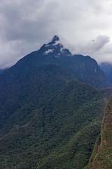 Machu Picchu 79