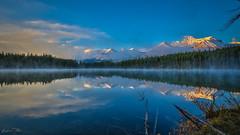 Herbert Lake reflections (epe3x) Tags: alberta banffnp canada canada2016 herbertlake kanada morgennebel schnee sonnenaufgang wald wasser epe3x forest morningfog snow sunrise water see berg himmel landschaft oe