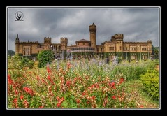 #india #karnataka #bangalore #bangaluru #bangalorepalace #bangalore_palace #wadiyardynasty #dynasty_of_wadiyar #jayachamarajendrawadiyar #monuments #palaces #history #history_of_india #incredibleindia #photos_from_india #colors_of_india #indiaphotosociety (alrayes1977) Tags: indiaphotosociety historyofindia jayachamarajendrawadiyar incredibleindia bangalore dynastyofwadiyar history bangalorepalace bangaluru palaces colorsofindia wadiyardynasty monuments india photosfromindia karnataka photooftheday