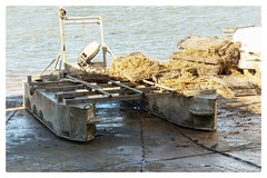 Oyster farming rig (kaberdi) Tags: oysters sea boat morocco maroc oualidia