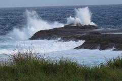 The sea won't win (Karlov1) Tags: wild surf