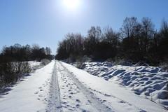 IMG_0241 (rudolf.brinkmoeller) Tags: eifel wandern natur eifelsteig hohesvenn