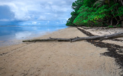 Orange Beach, Peleliu (Olivera White) Tags: asia pacific palau oliverawhite secondworldwar peleliu americans japanese battle beach