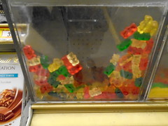 DSC03040 (classroomcamera) Tags: grocery groceries store candy gummy bear bears gummies colors red green yellow orange plastic box display buy buying shop shopping scoop weight kid kids child children want please ask parent parents treat treats snack snacks dessert desserts junk food