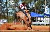 Moura e Bailarina da Ferro Quente (Eduardo Amorim) Tags: gaúcho gaúchos gaucho gauchos cavalos caballos horses chevaux cavalli pferde caballo horse cheval cavallo pferd pampa campanha fronteira quaraí riograndedosul brésil brasil sudamérica südamerika suramérica américadosul southamerica amériquedusud americameridionale américadelsur americadelsud cavalo 馬 حصان 马 лошадь ঘোড়া 말 סוס ม้า häst hest hevonen άλογο brazil eduardoamorim gineteada jineteada
