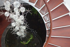 Staircase in cafe (koukat) Tags: lanzarote cactus garden cesar manrique jardin islas canarias canary islands quarry windmill