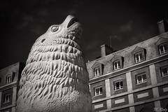 Sea lion (Marcello Rodriz) Tags: sea lion lobo marino estatua statue monumento monument mar del plata buenos aires argentina blanco y negro black white rodriguezpuebla rodz fuji fujifilm xt2 1855 night sunset atardecer
