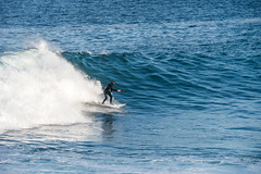 2018-Jan-California-624 (4x4Foto) Tags: 2018 bigsur california deetjensrestaurant emeraldbay january montereybay pacificcoasthighway pacificgrove pacificocean southlaketahoe flowers ocean plants rocks sunset sunshine surf surfing travel trees waves virginia unitedstates