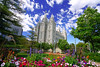 Flowerbeds in front of Salt Lake Temple, Salt Lake City, Utah (Andrey Sulitskiy) Tags: usa utah saltlakecity