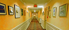 a Florida project-2 (albyn.davis) Tags: hallway interior building perspective angles yellow orange vivid vibrant bright color colorful walls