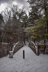 Suspension Bridge (tensorgirl) Tags: bridge nature snow